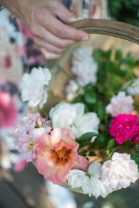 Eindeloos genieten van de lange bloeitijd van rozen